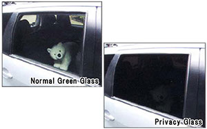 Green Tint Auto Glass and Privacy Auto Glass